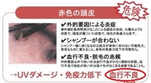 f:id:japanese-standard0:20170212211133j:plain