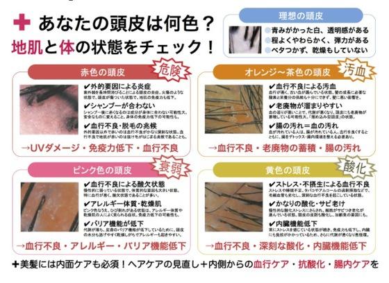 f:id:japanese-standard0:20170212214923j:plain