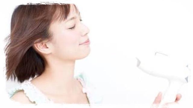 f:id:japanese-standard0:20170303182242j:plain