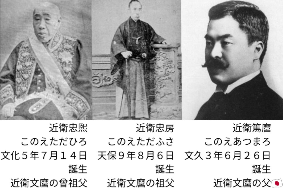 f:id:japanfather:20201203210234p:plain