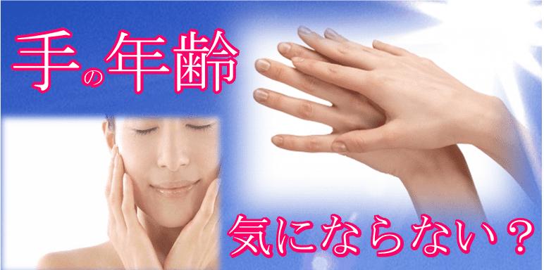 きれいな手の甲が日差しを浴びている画像