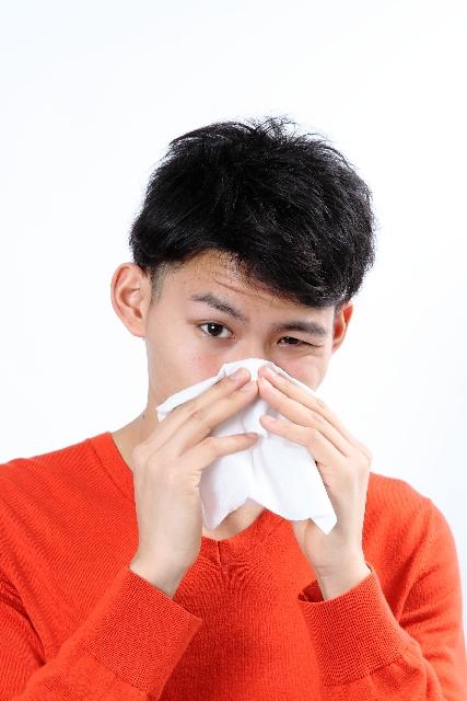 【えぞ式すーすー茶の成分】花粉症に効果ありと言っても成分は何?:susucha.hatenablog.jp:20160220195743j:plain