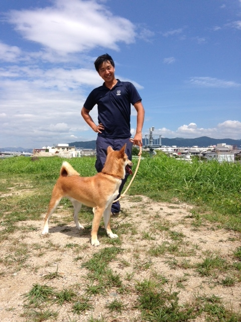 f:id:japanrescue1995:20160903113752j:plain