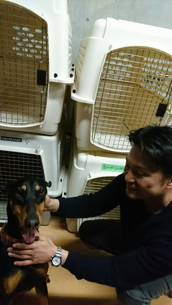 f:id:japanrescue1995:20170408133242j:plain