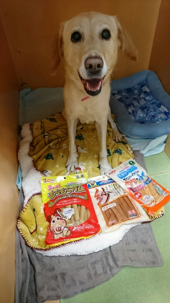 f:id:japanrescue1995:20171016191939j:plain