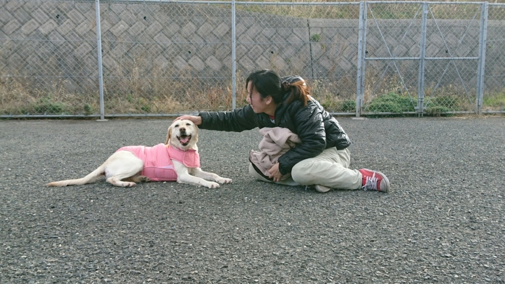 f:id:japanrescue1995:20180121090028j:plain
