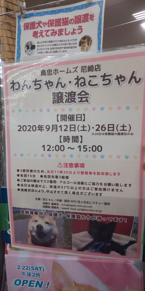 f:id:japanrescue1995:20200913121817j:plain