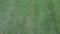 [テクスチャ][地面][草][芝生]