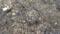 [テクスチャ][地面][瓦礫][石][コンクリート][タイル]