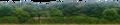 [背景][森林]