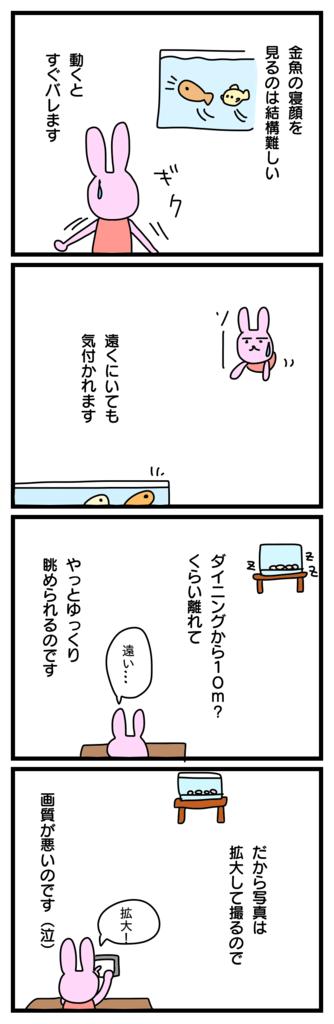 f:id:japantk:20171001155300p:plain