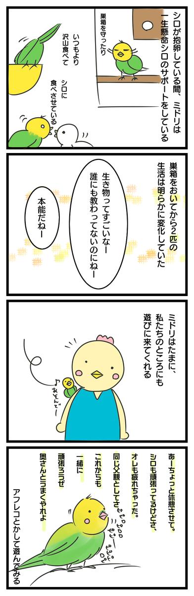 f:id:japantk:20191212211126p:plain
