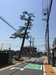 f:id:japanwalkwalkwalk:20200920193357j:plain
