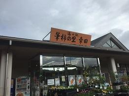 f:id:japanwalkwalkwalk:20201115184734j:plain