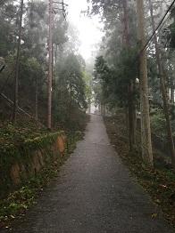 f:id:japanwalkwalkwalk:20201115191553j:plain