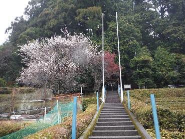 f:id:japanwalkwalkwalk:20210221075945j:plain