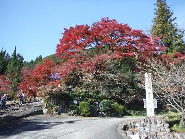 f:id:japanwalkwalkwalk:20210711065148j:plain
