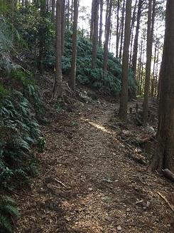 f:id:japanwalkwalkwalk:20210717085102j:plain