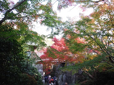 f:id:japanwalkwalkwalk:20210717092224j:plain