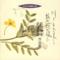 日本合唱曲全集 川よ とわに美しく・旅の途の風に/三枝成彰・佐藤敏直