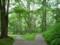 軽井沢セゾン現代美術館の庭
