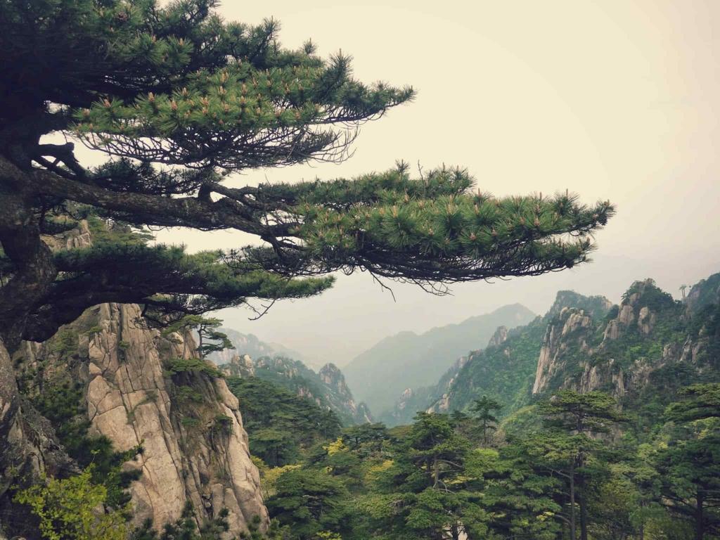 中国っぽい場所