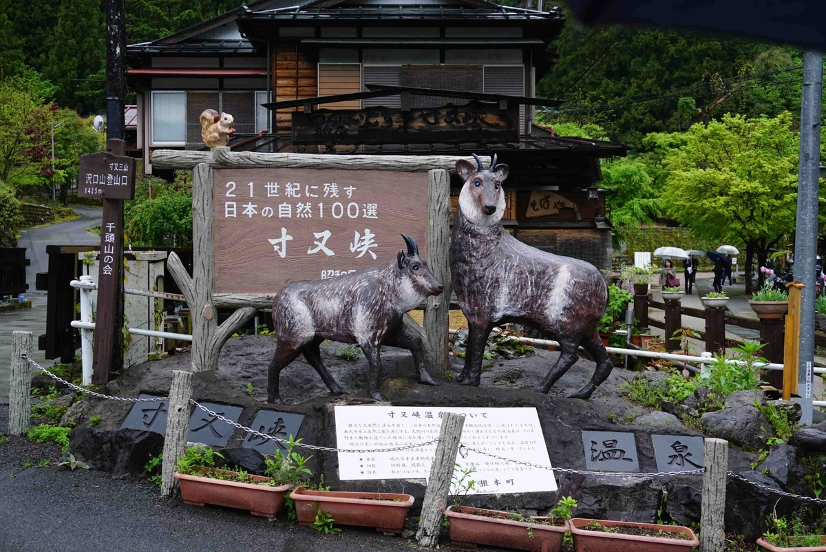 yumenoturihashi4