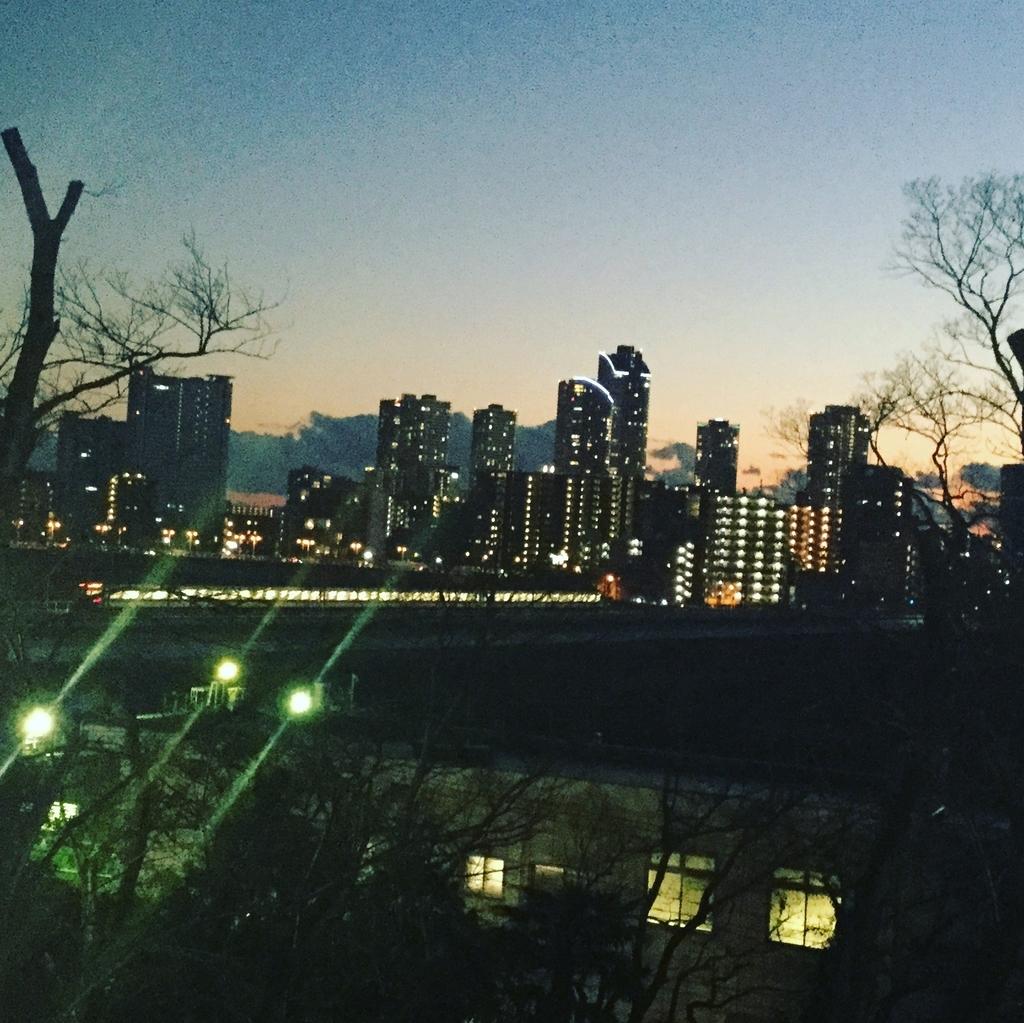 多摩川台公園からの景色