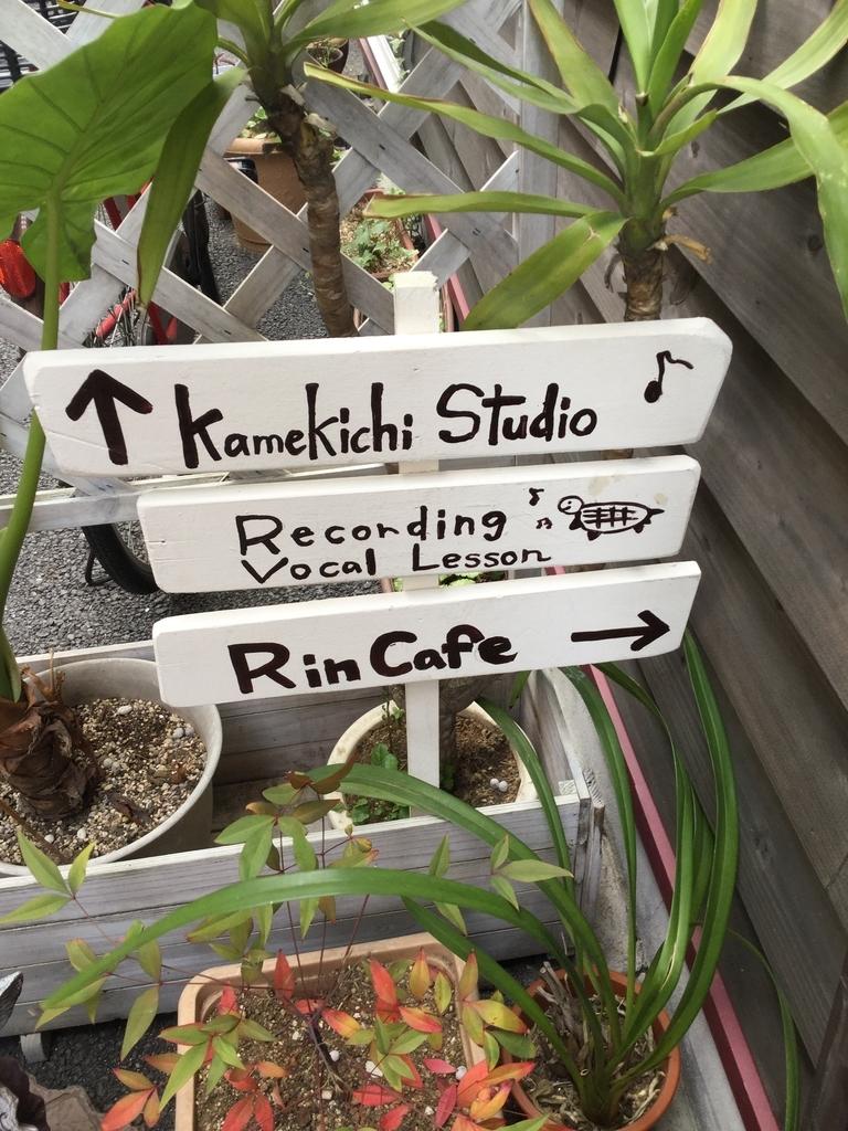 鈴木輪のVocal Lesson ,Recording Studio(Kamekichi Studio)