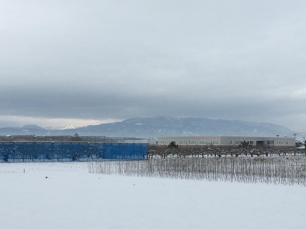 葉山の風景