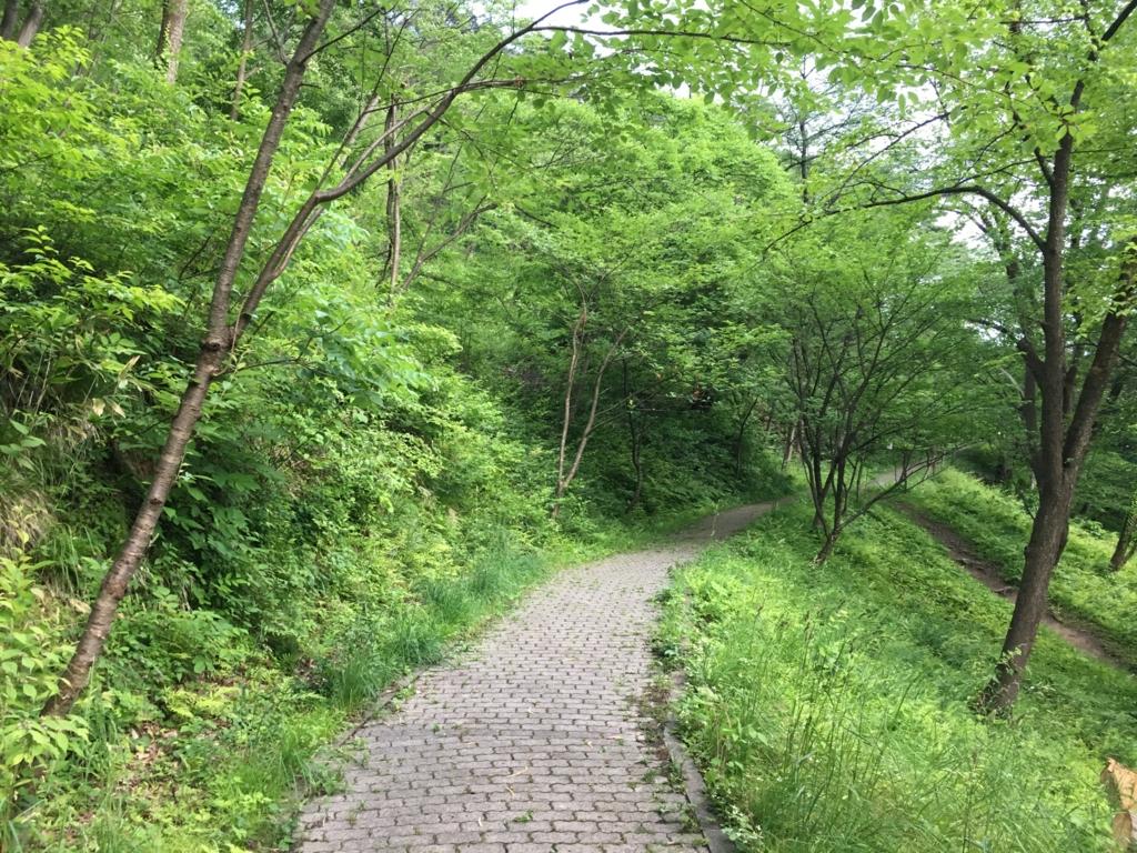 若木山を登るみち