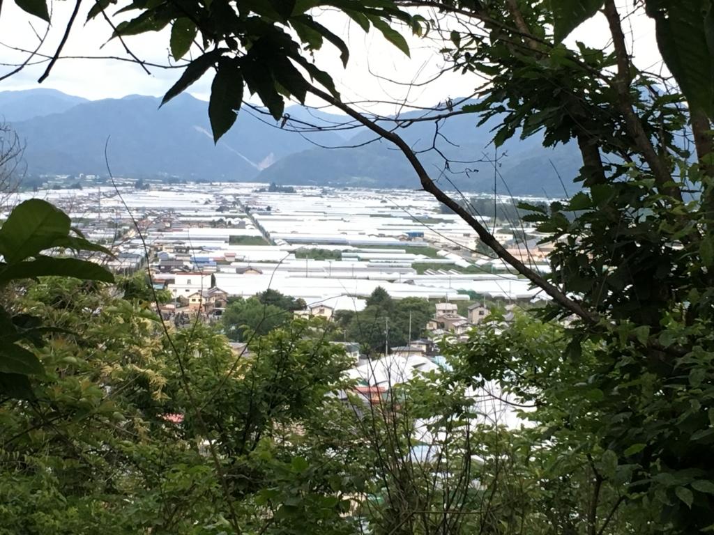 サクランボのテントハウスを若木山から眺めました