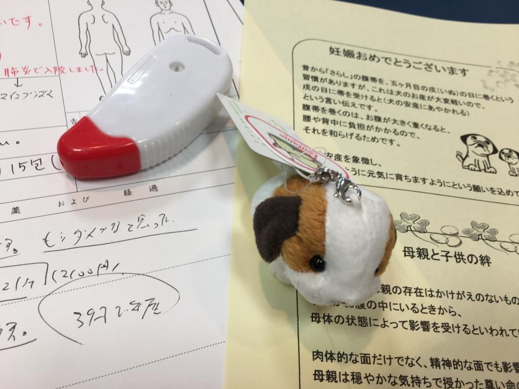 妊娠のご報告に犬のマスコット