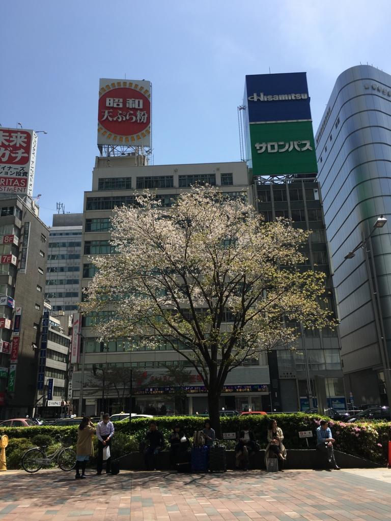 東京駅の葉桜