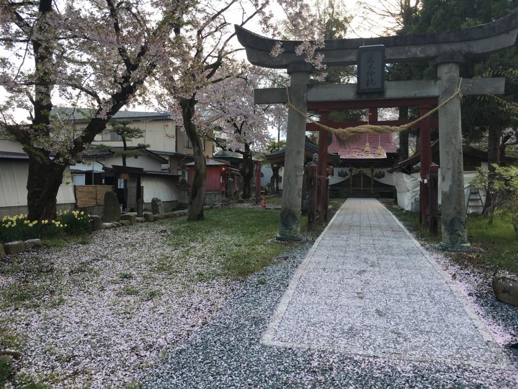 若木神社、桜が散りました