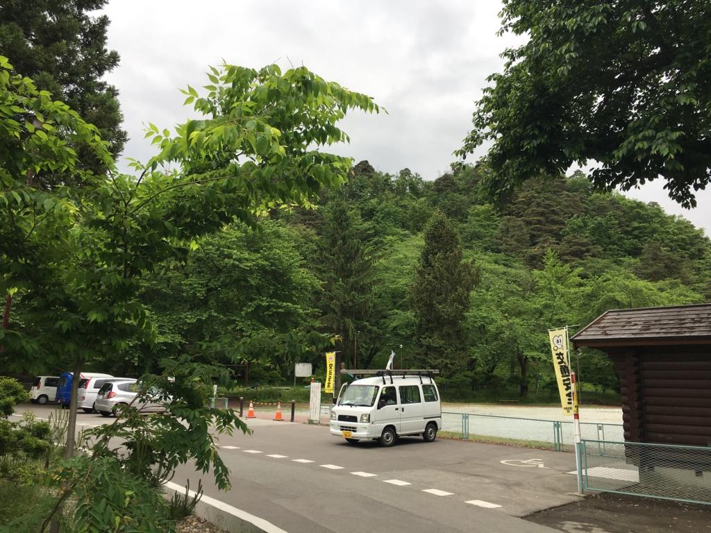若木山、緑の季節です。