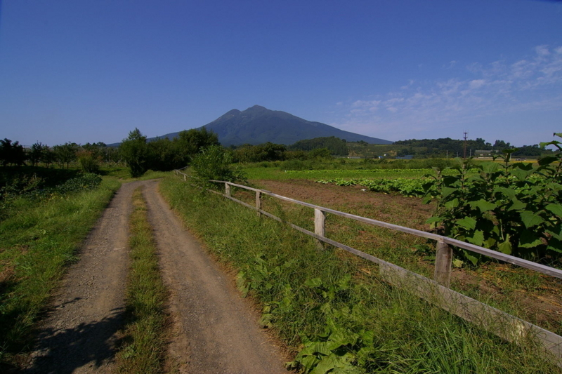 岩木山への道
