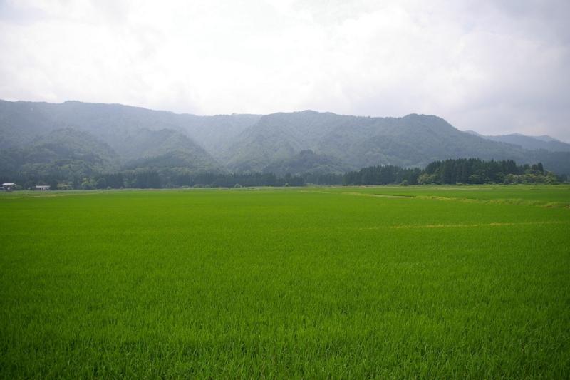 小国で撮影した田園風景