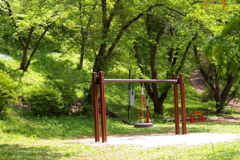 新緑の若木山公園