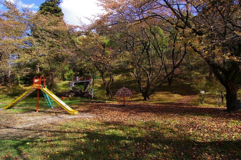 若木山公園 「秋」