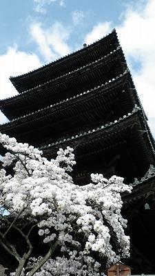 京都、ねねの道から五重塔眺め