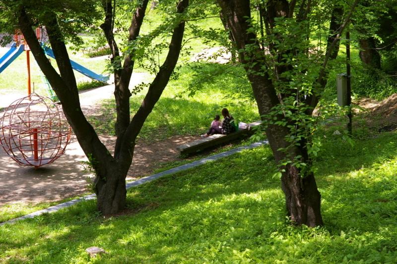 若木山公園 「憩」
