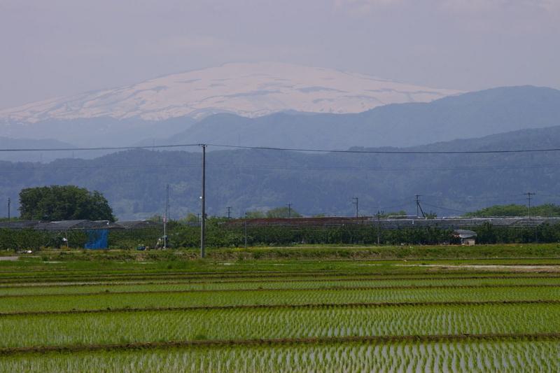 天童市 田んぼから眺めた月山と葉山