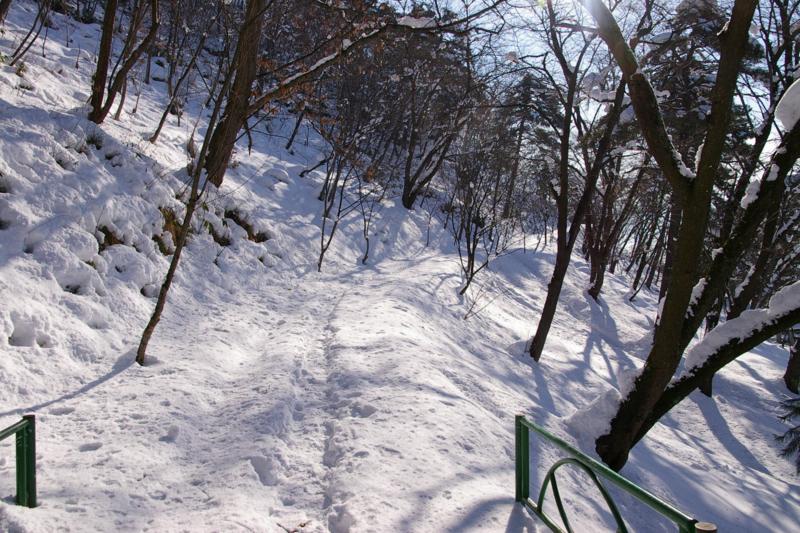 冬の白銀の若木山を登る道