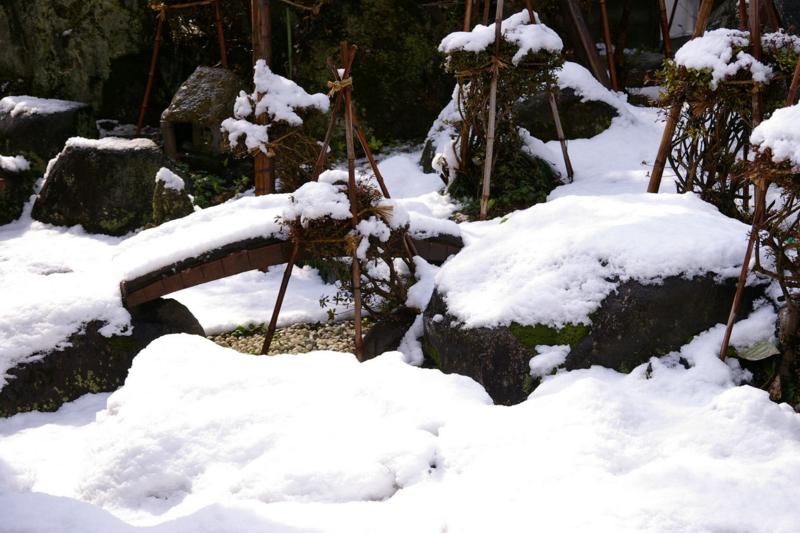 4月の春の淡雪が降りました