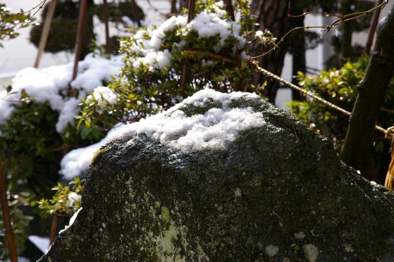 4月の雪の風景