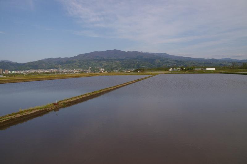 水が入った田んぼからの蔵王眺め