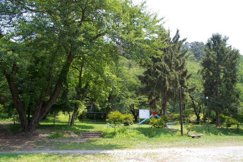 緑の若木山公園