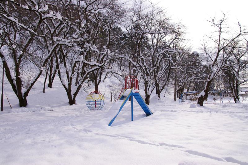 若木山公園の雪景色