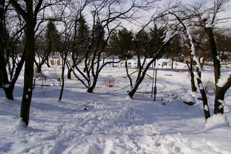 若木山中腹から若木山公園眺め